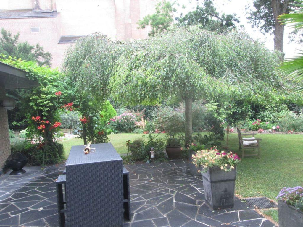 Aménagement de jardin Cambrai Arras et Douai