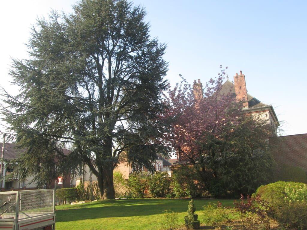 entretien de jardin à Cambrai arras et douai