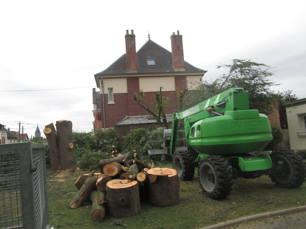 abattage arbre cambrai arras douai green net services