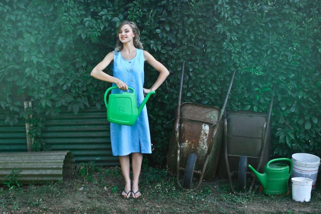 jardinage-printemps-green-net-services-jardinier-paysagiste-cambrai-arras-douai